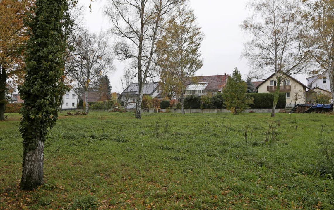 Anwohner des Ahornwegs (im Hintergrund...geplanten Stellplatz für Wohnmobile.    | Foto: Christoph Breithaupt