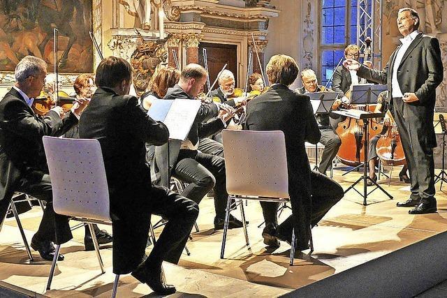 Kammerorchester zu Gast im Kolleg