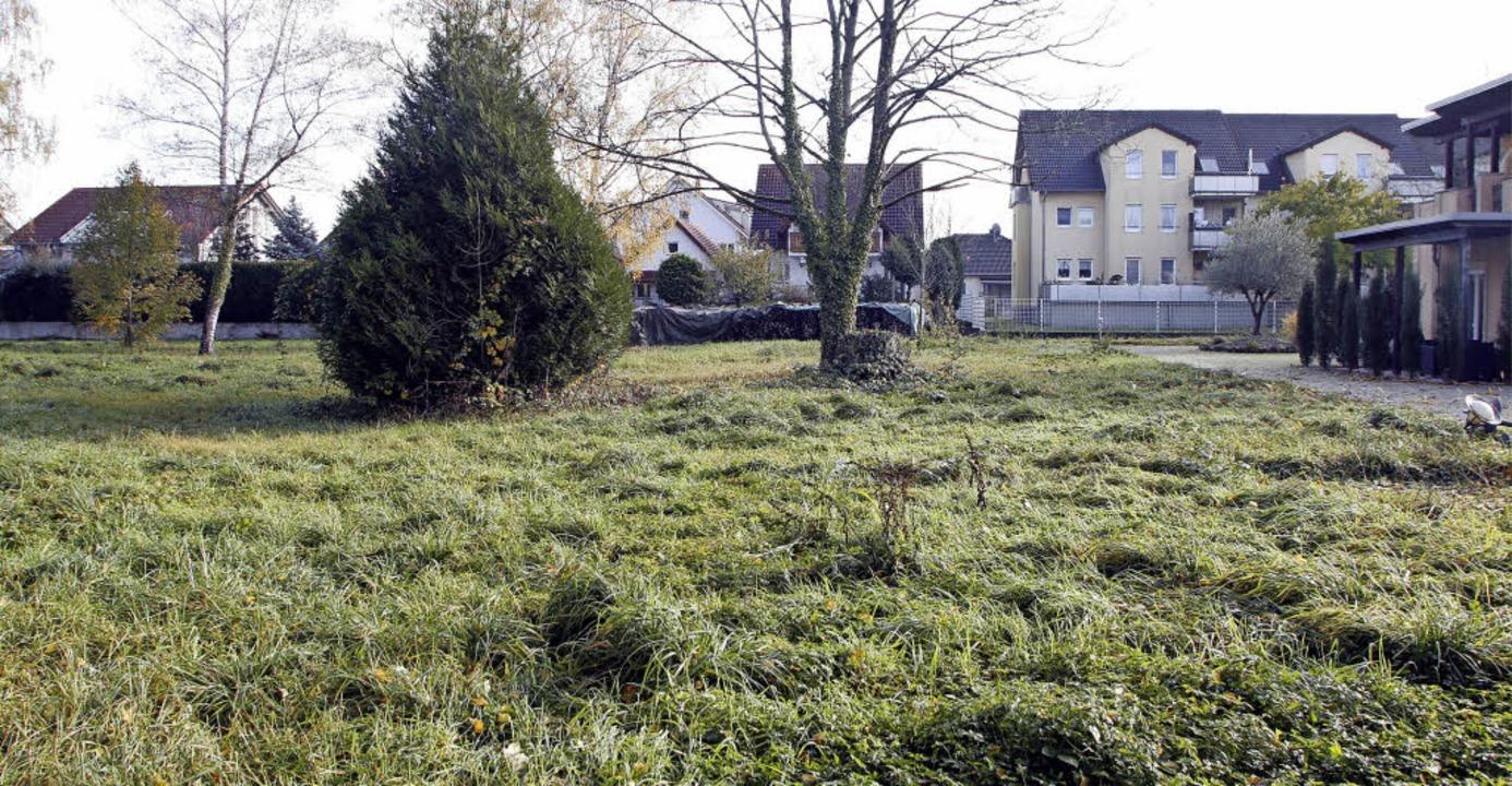 Aus der Wiese soll ein Stellplatz werd...Seehotel), daran grenzt Wohnbebauung.     Foto: Heidi Fössel