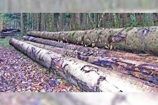 Für den Wald