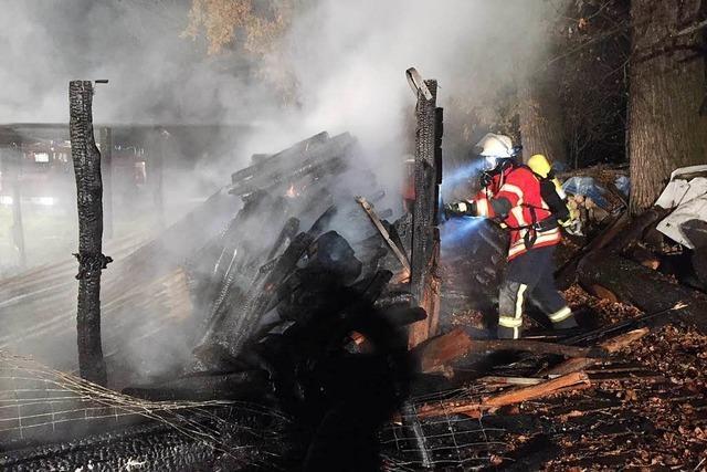 Pferdeunterstand brennt nach Brandstiftung komplett ab