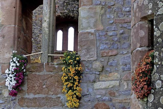 Bunter Herbst auf der Burgruine