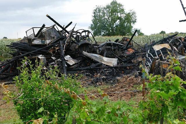 Polizei überführt jugendliche Brandstifterbande in Offenburg
