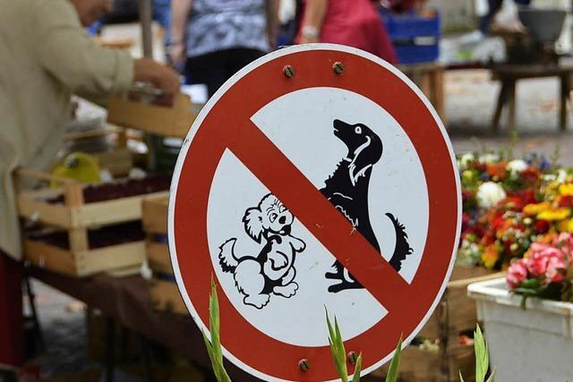 Ordnungsamt greift beim Hundeverbot auf dem Markt nicht durch