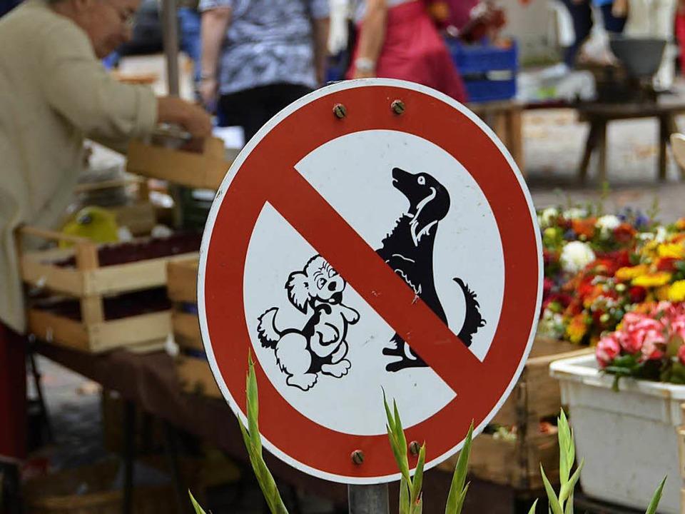 Ordnungsamt Greift Beim Hundeverbot Auf Dem Markt Nicht