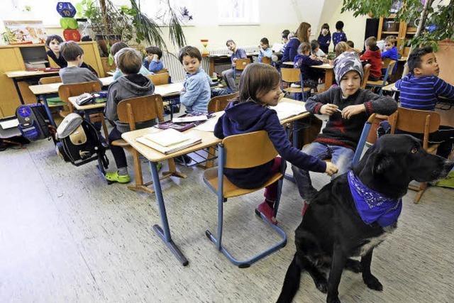 Hund Kalli ist im Schülerhort ein gern gesehener Gast