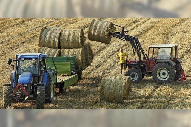 Bauern zunehmend unter Druck