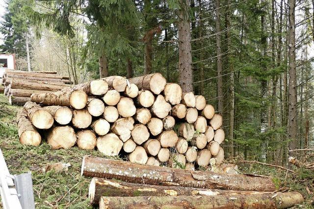 Vorbehalte gegen Waldgenossenschaft