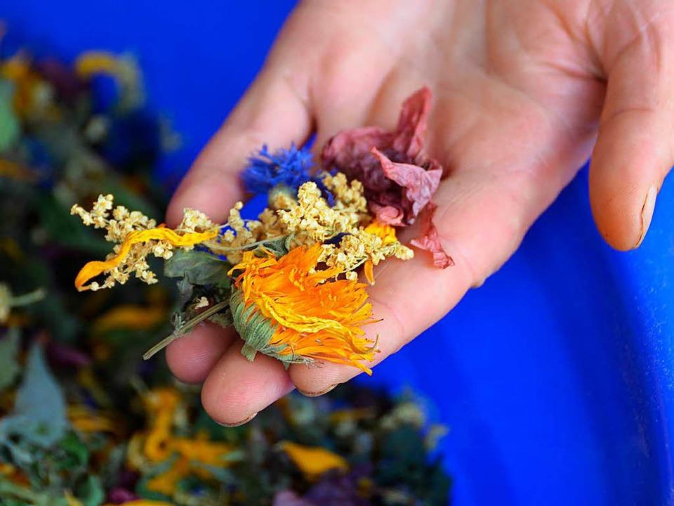 Nur ganze Blüten und Blätter, angebaut...Teemischungen der Kräutermanufaktur.    | Foto: KISTLER