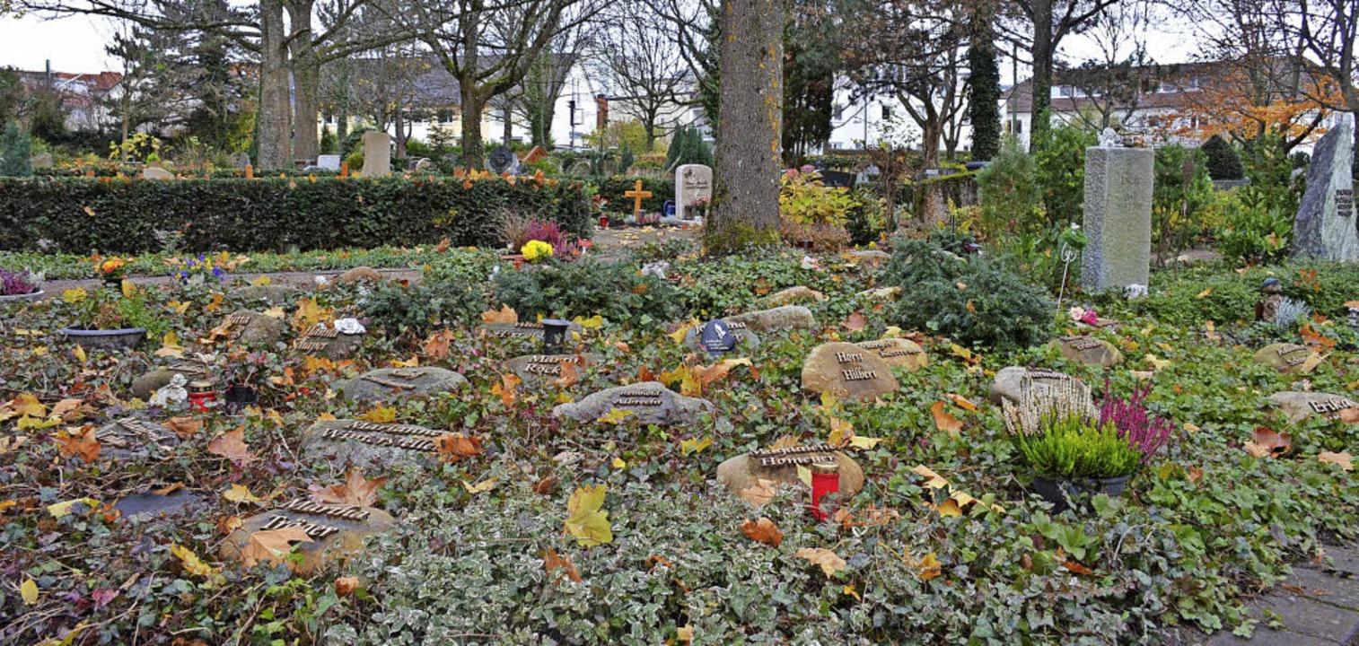 Eines der Urnenfelder auf dem Staufener Friedhof  | Foto: Gabriele Hennicke
