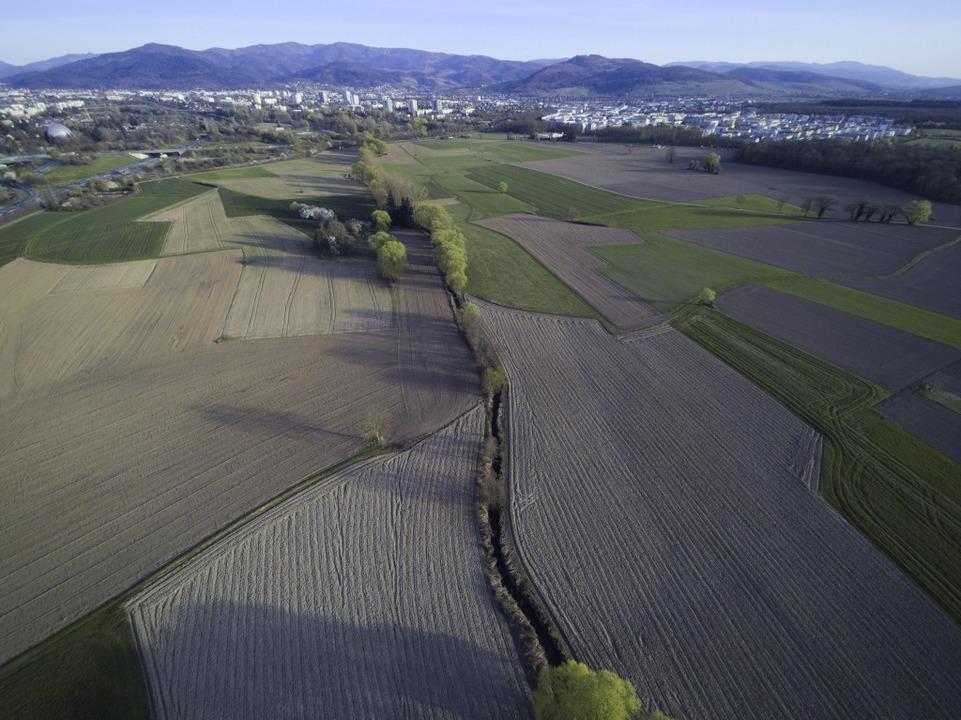 Hier soll der neue Stadtteil Dietenbach entstehen.  | Foto: Michael Saurer