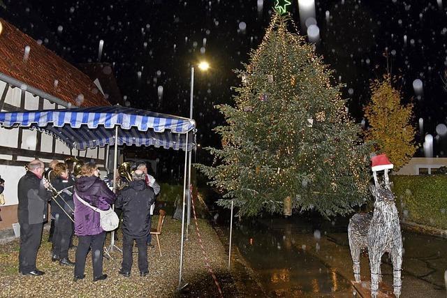 Regen stoppt den Lichterbaum nicht