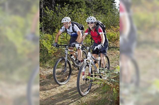 Verbessertes Wegenetz für Mountainbiker angestrebt