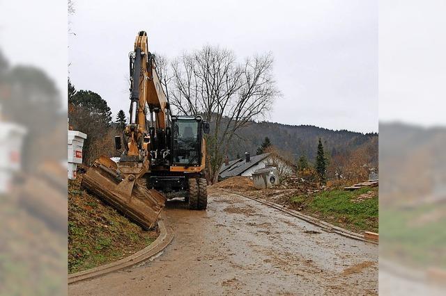 Forsthausgarten: Bauplätze begehrt