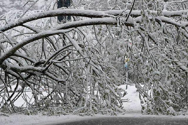 Schneebruch: Erneut ist der Strom in St. Märgen weg