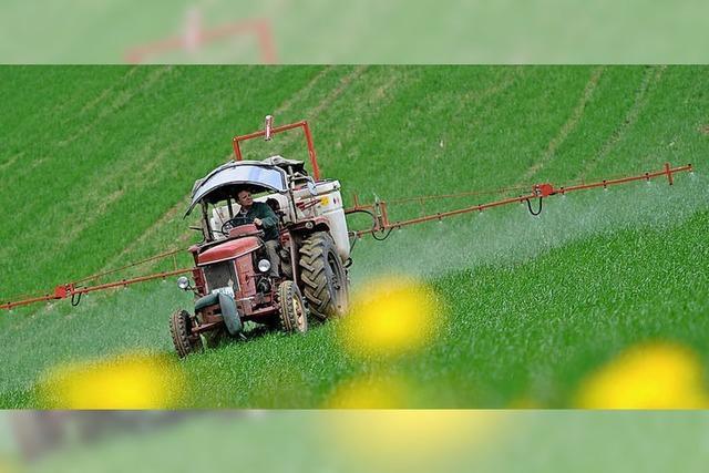 Glyphosat: Grüne fordern Handeln auf lokaler Ebene