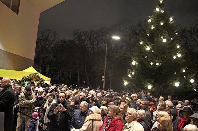Der Weihnachtsbaum begeistert Berlin