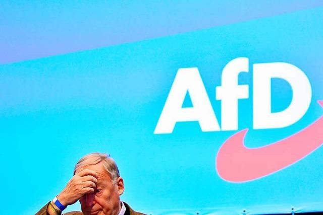 Die AfD war beim Parteitag kurz vor der Spaltung