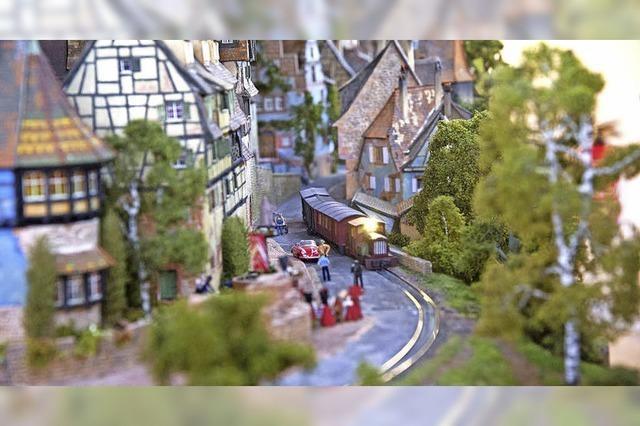 Faszinierende Miniaturwelt