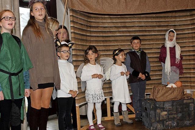 Wenn Schildkröte Luisa dem Stern von Bethlehem folgt