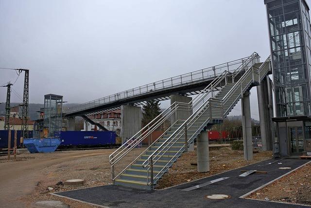 Zweite Brücke ins Haltinger Rad