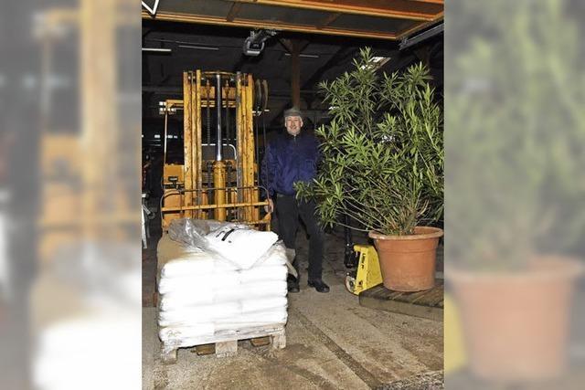Hinter dem Tor des Bauhofs haben sich Frostbeulen eingenistet