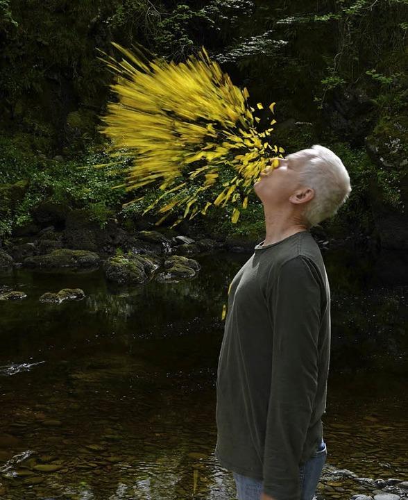 Blätterfontäne: Andy Goldsworthy   | Foto: Höhnepress/Michael Heilemann