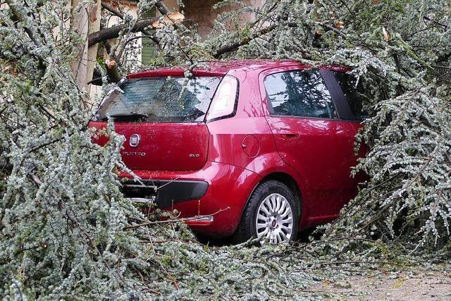 Baum stürzt bei Unwetter auf Fiat Punto und Balkon
