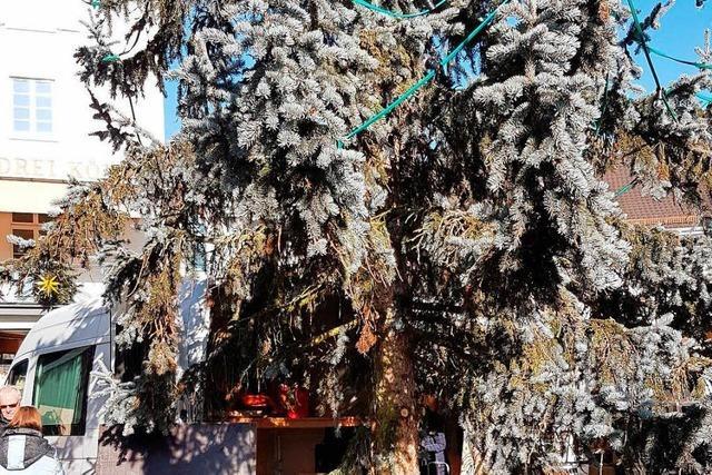 Harte Urteile über den Lörracher Weihnachtsbaum