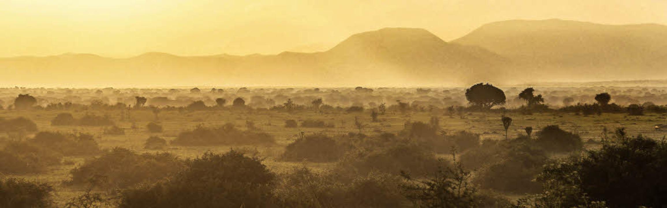 Morgenlicht in der Kasenyi-Ebene:Der ...r als viele andere Wildtierreservate.   | Foto: dpa