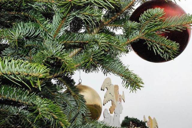 Erlebnisse und Begegnungen zur Weihnachtszeit im Landkreis