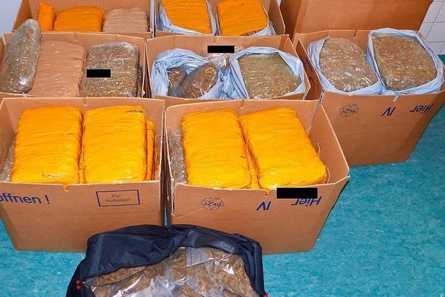 Polizei schnappt zwei Dealer und findet 167 Kilo Marihuana