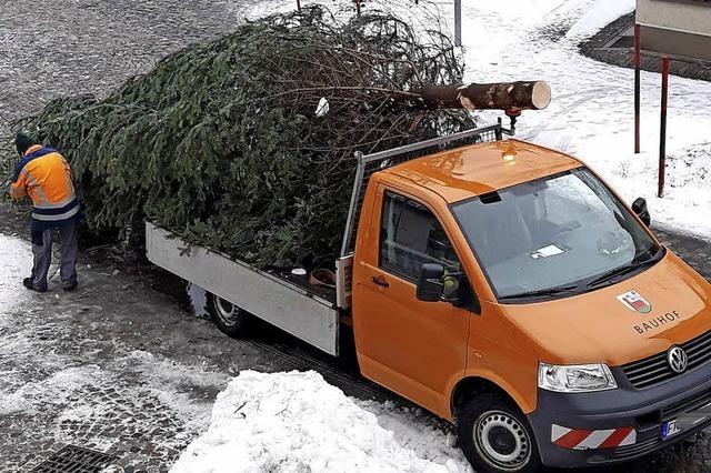 Weihnachtsbaum, der Zweite