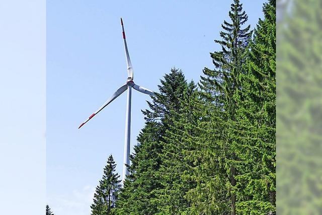 Neuer Gegenwind für Windpark Rohrenkopf