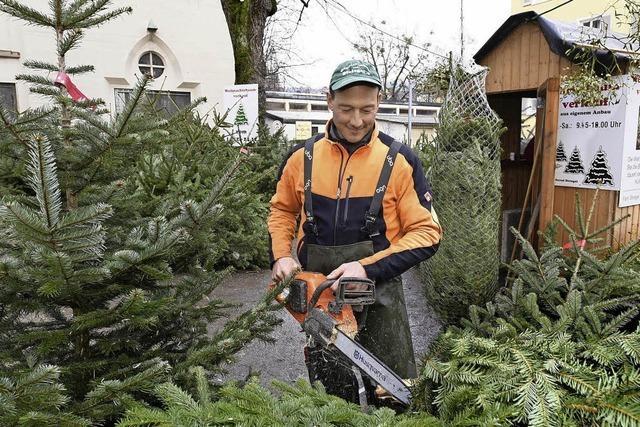 Freiburgs Christbaumhändler hadern mit dem Sonntagsverkauf