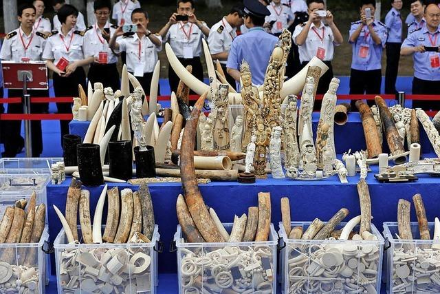 China stoppt Handel mit