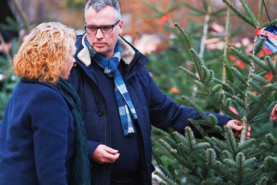 Die BZ-Weihnachtsbaumaktion 2017 in der Alten Säge in Zarten. Wir wünschen allen Geschäftskunden und Leserinnen und Lesern eine geruhsame Adventszeit und frohe Weihnachten! (Foto: Miroslav Dakov)