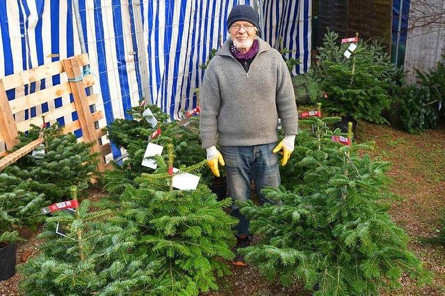 Mieten statt kaufen: Wo Weihnachtsbäume eine zweite Chance bekommen