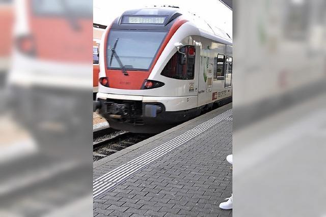 Eine S-Bahn zum Euroairport