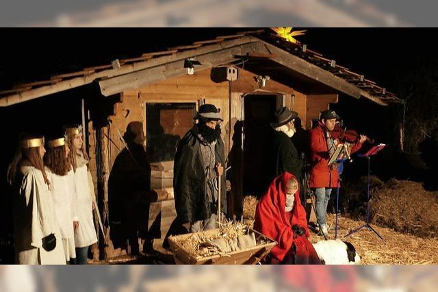 Weihnachten im Eselstall erleben