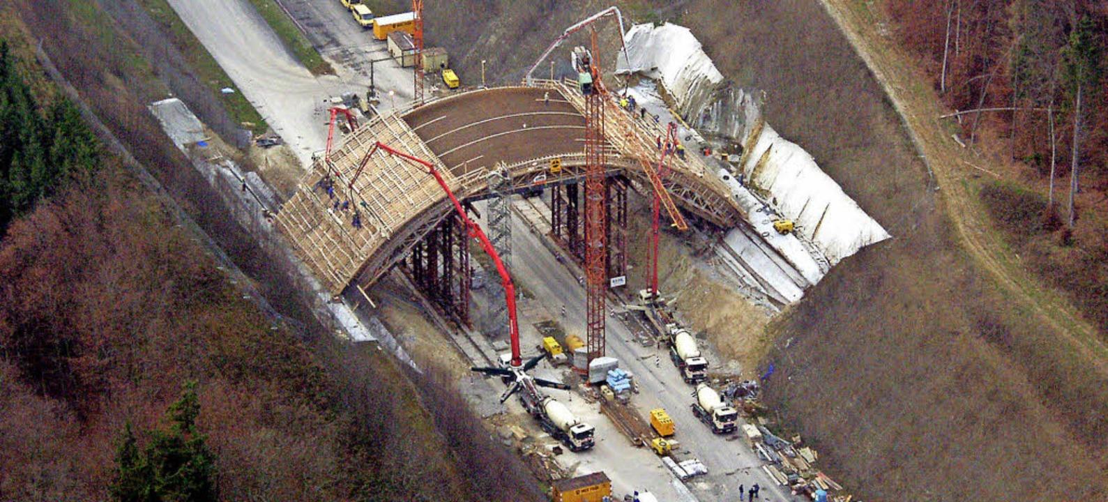 Ähnlich wie hier an der A 98 soll die ...Heitersheim eine Grünbrücke erhalten.   | Foto: Archivfoto: Meyer