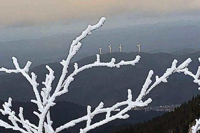 RP nennt vier mögliche Standorte für Windräder im Landschaftsschutzgebiet Schauinsland
