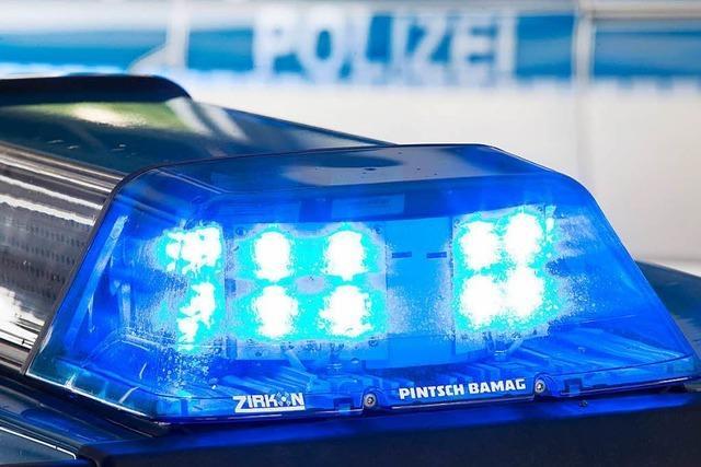 Jugendliche beleidigen Polizisten im Lörracher Rosenfelspark