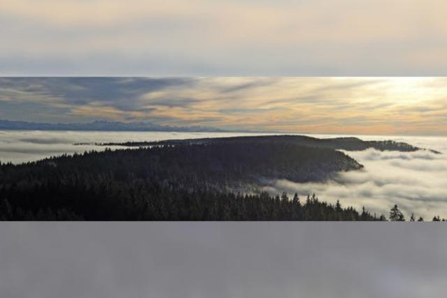Eine Insel im Nebelmeer