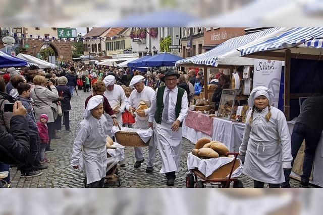 Bürgerbeteiligung, Baumaßnahmen, Brotmarkt