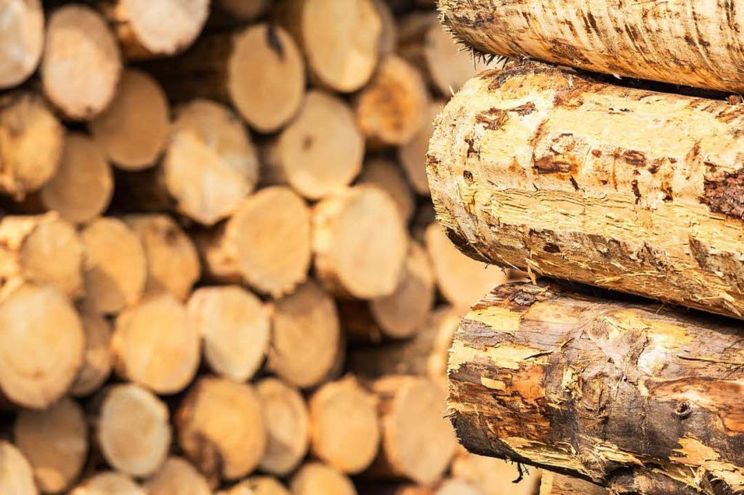 Wird es für die Bäume Ersatzpflanzung geben?  | Foto: Carlotta Huber