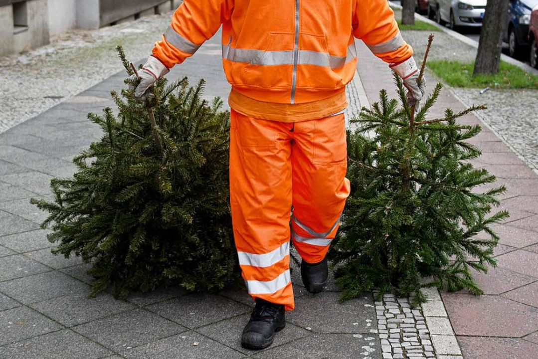 Der Weihnachtsbaum hat ausgedient, in ...ernt am Samstag die immergrüne  Deko.     Foto: Symbolfoto: dpa