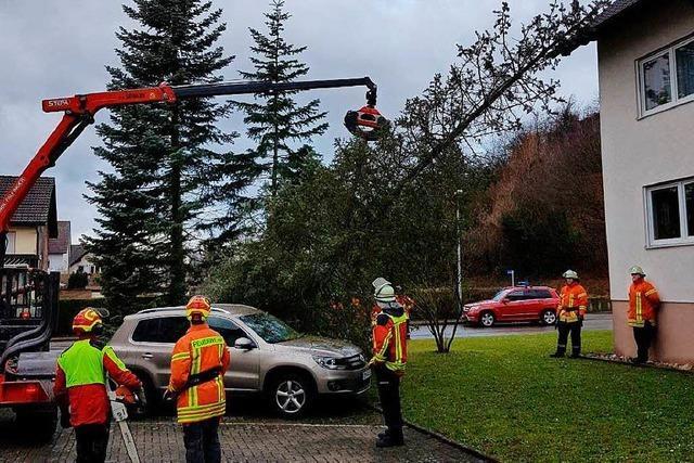 Sturm lässt Bäume im Kreis Emmendingen umstürzen