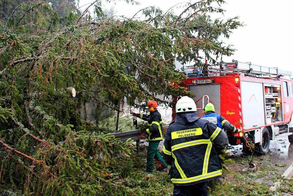 Im gesamten Hochschwarzwald hat Sturmtief Burglind Schäden angerichtet (Foto: kamera24)