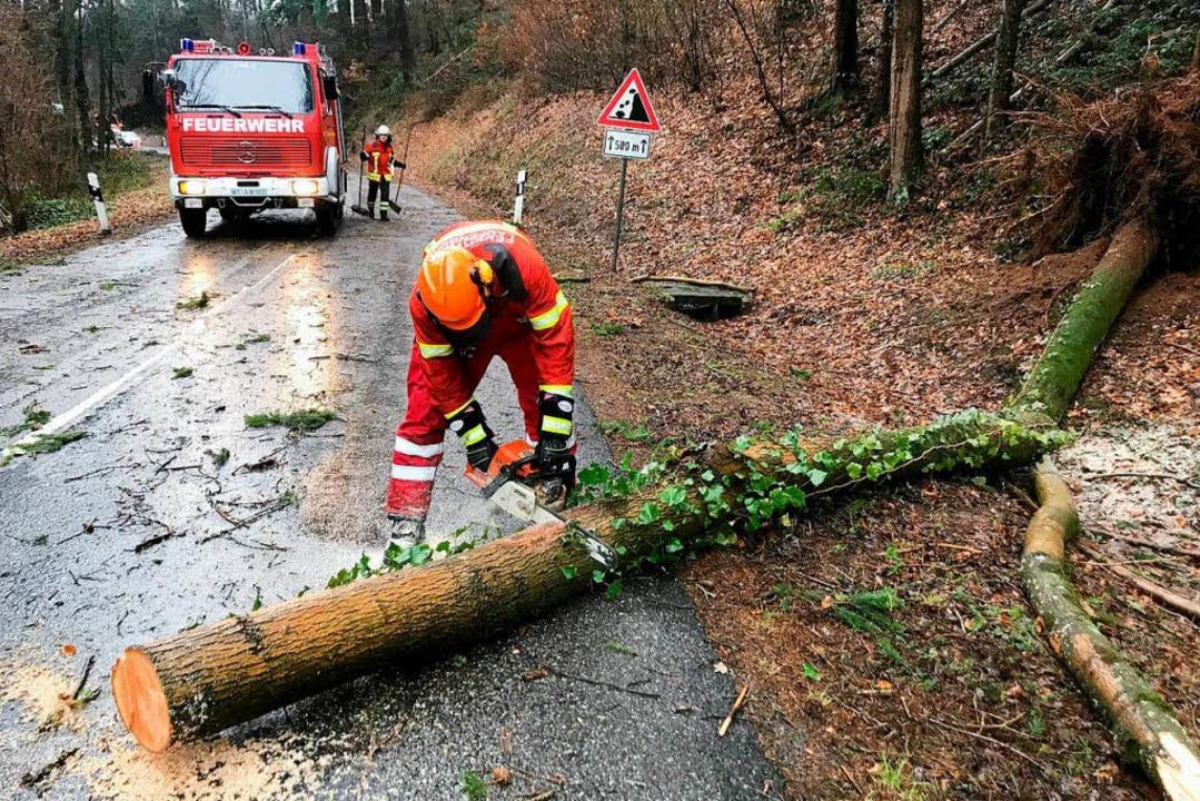 Die Laufenburger Feuerwehr rückte mit ...us, vor allem, um Bäume zu beseitigen.  | Foto: Feuerwehr Laufenburg